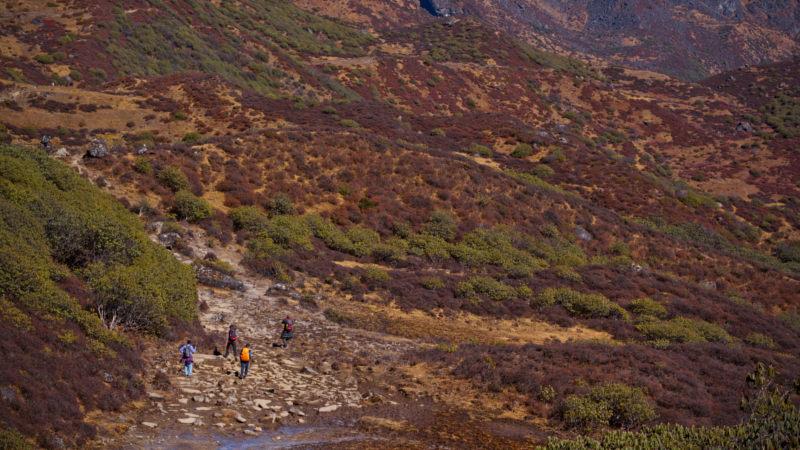 Uttarey-Singalila-Goechala Trek