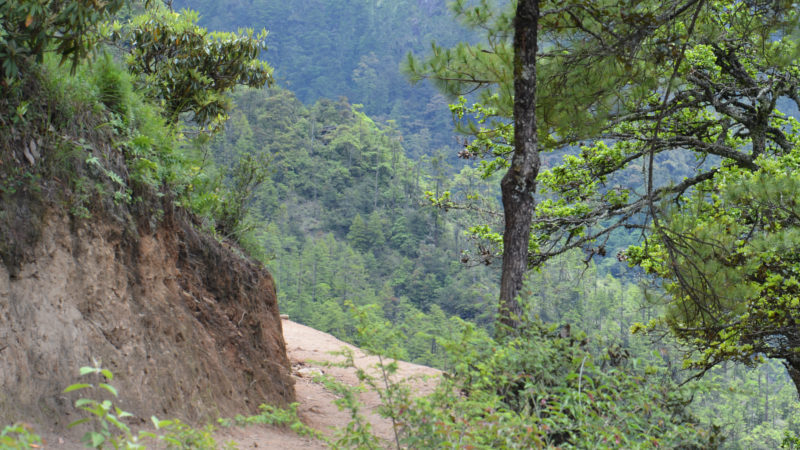 Punakha-day-hike-SMILE-PANDA-Tours-2